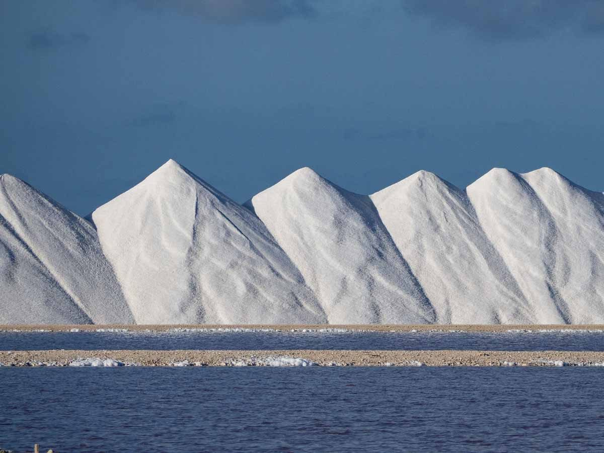 Things to do in Bonaire- Salt Ponds