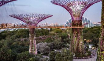 Singapore Itinerary for Art Gardens by the Bay