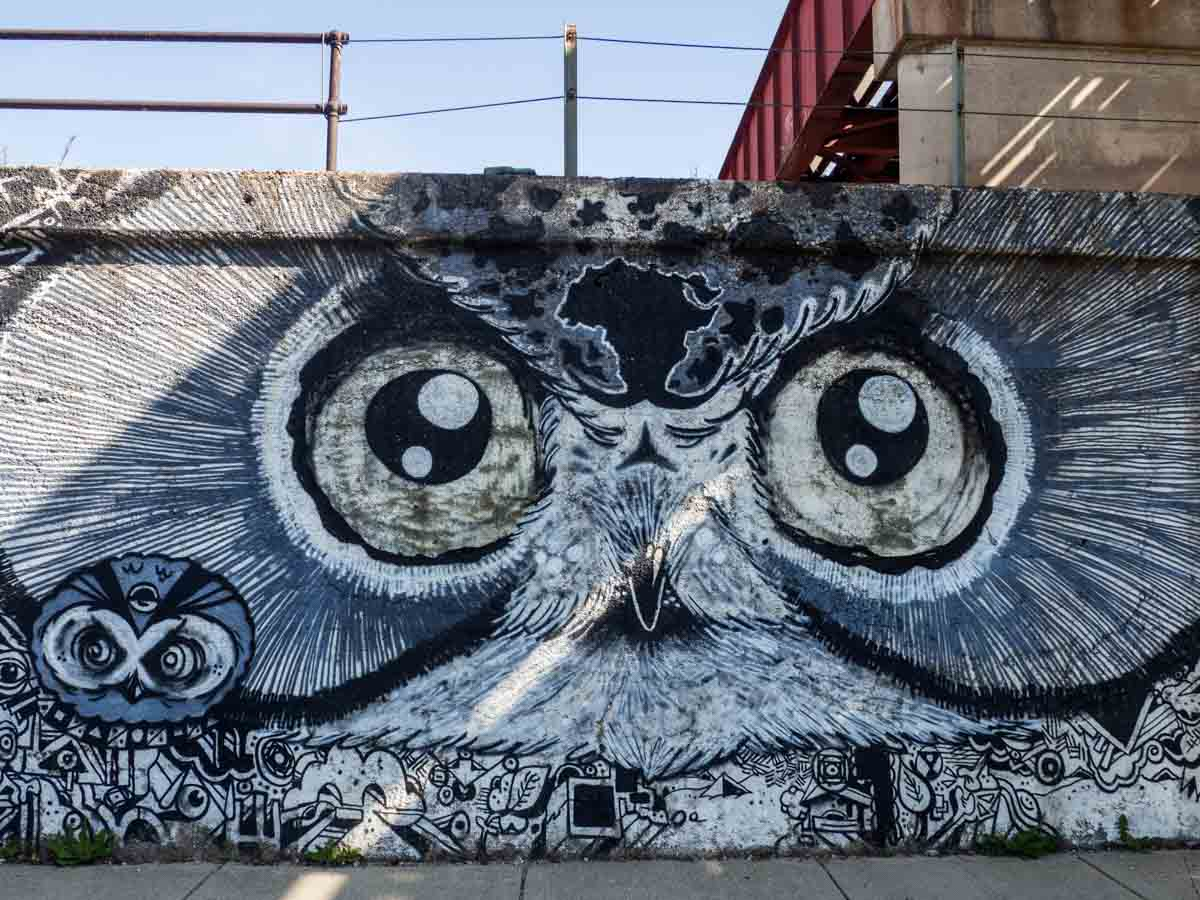 Owl wall mural in Pilsen Chicago