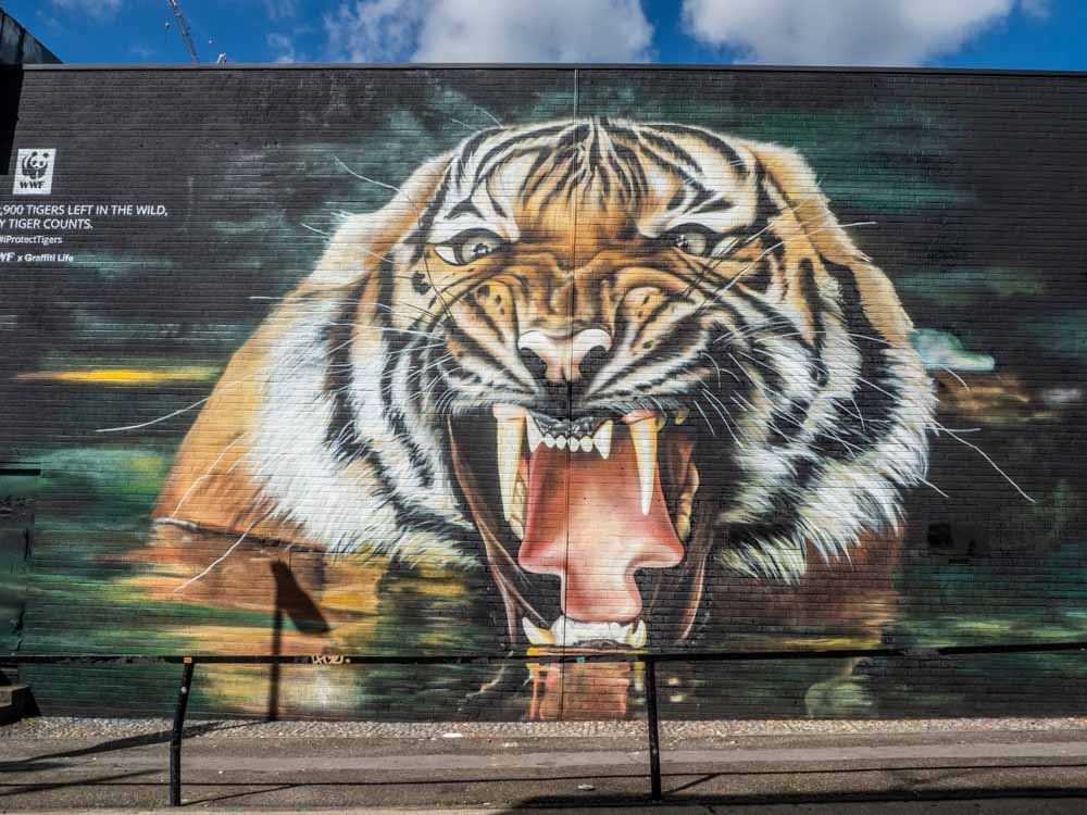 Shoreditch street art tiger by Graffiti Life
