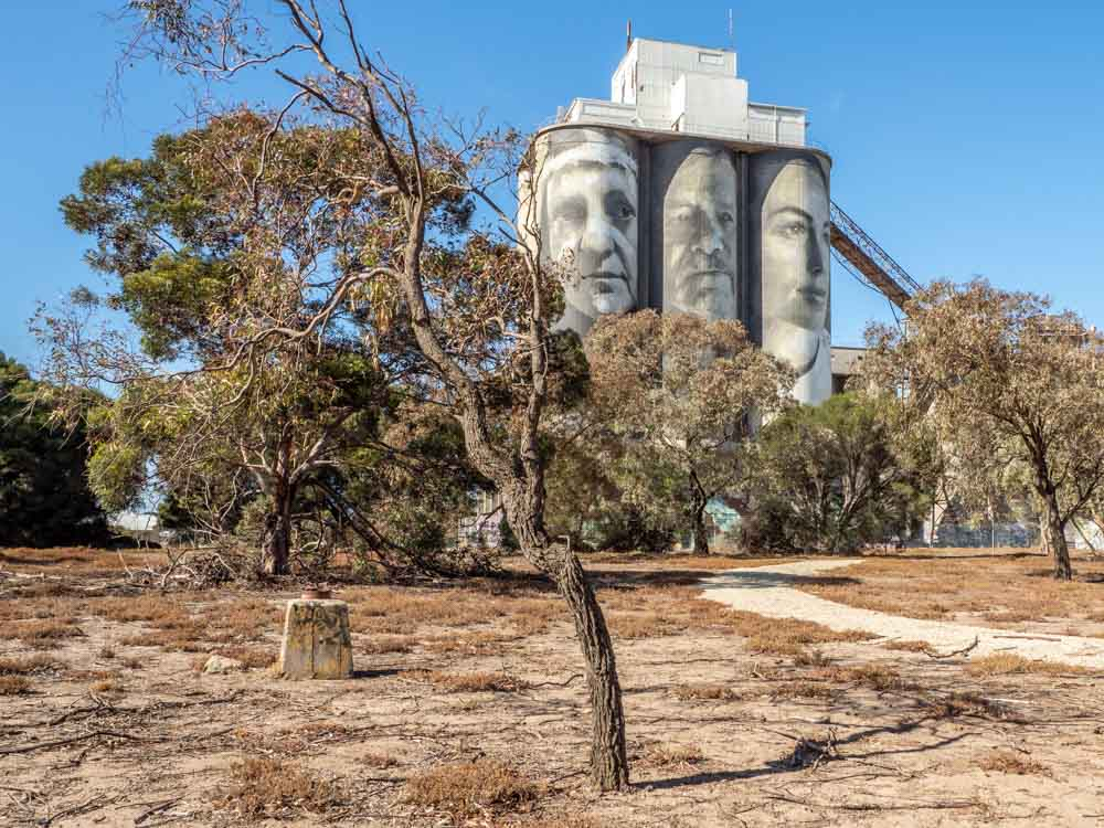Rone silo mural in Geelong. Painting of people on a grain silo