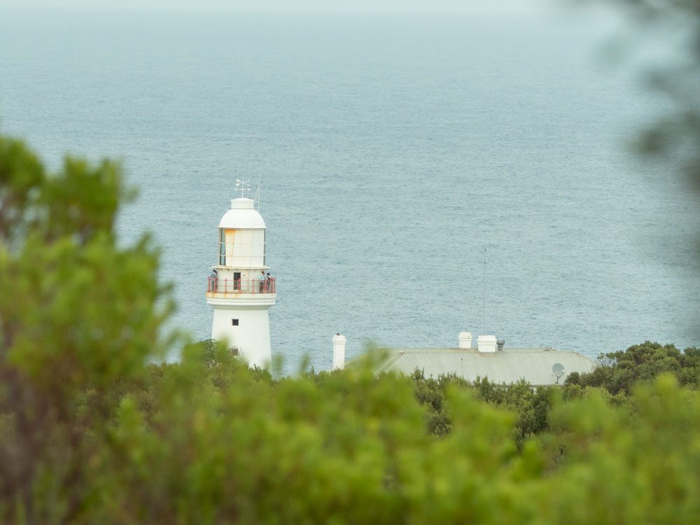 Cape Otway Lighthouse view Great Ocean Road. Lighthouse seen through trees