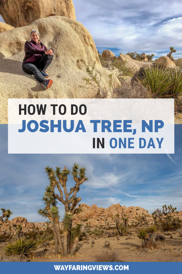 What to do in Joshua Tree in one day